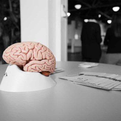 Link Moves - Das stressreduzierende Gehirnfitnesstraining