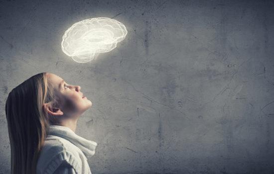 Blog Gehirn Jugendliche Pubertät