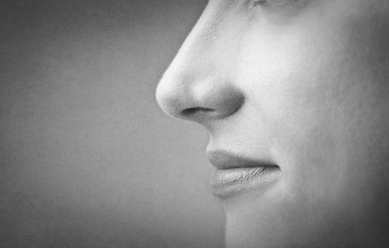Blog Geruchssinn