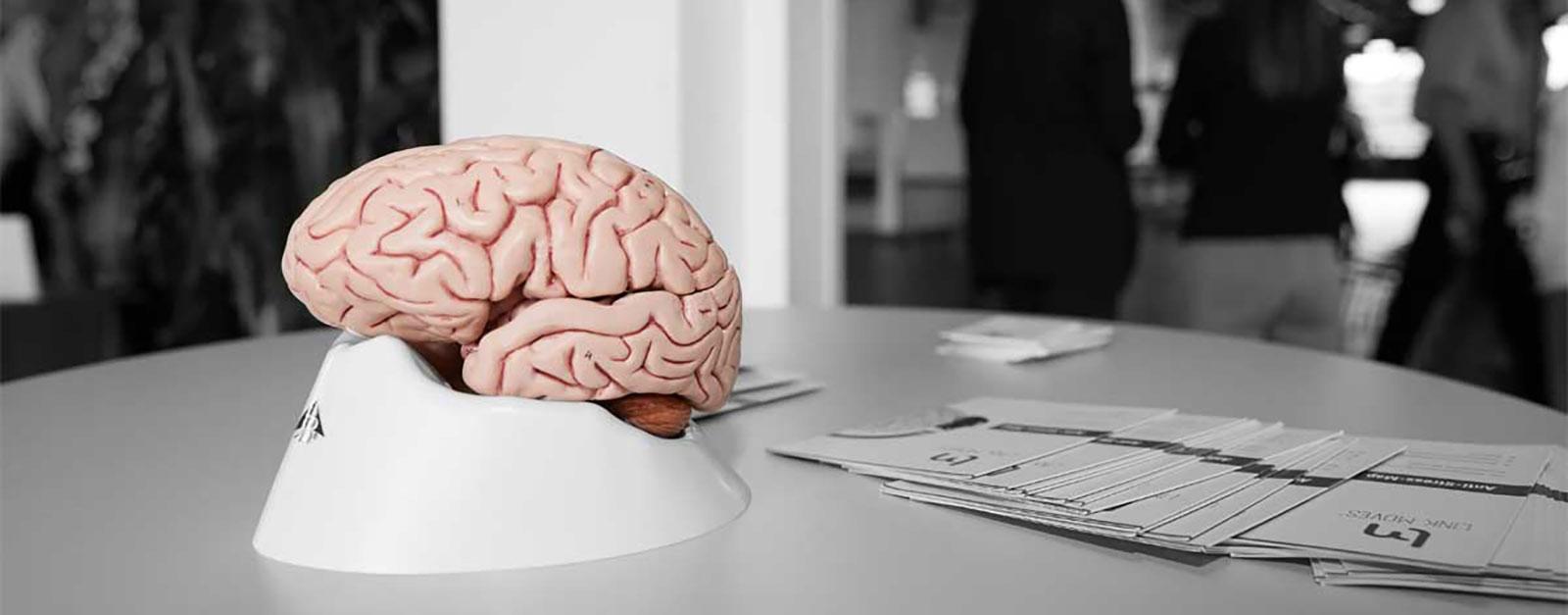 LINK MOVES® – das stressreduzierende Gehirnfitnesstraining